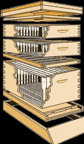 Εξαγωγέας μελιού στο Μουσείο Μέλισσας Ρόδου