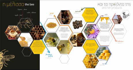 Section 2 - Apiculture tools and products