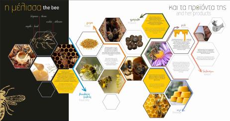 Τα προϊόντα της μέλισσας